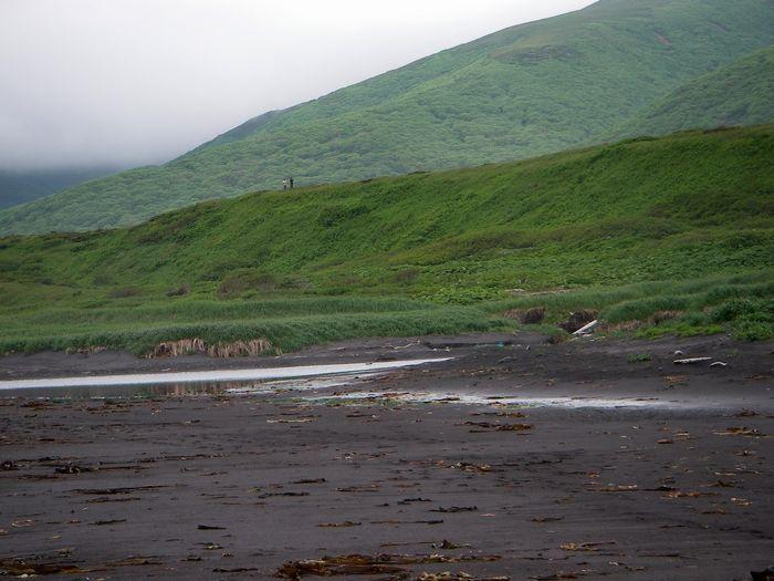 о. Симушир, бухта Душная. Максимальный заплеск цунами составил 20 метров.