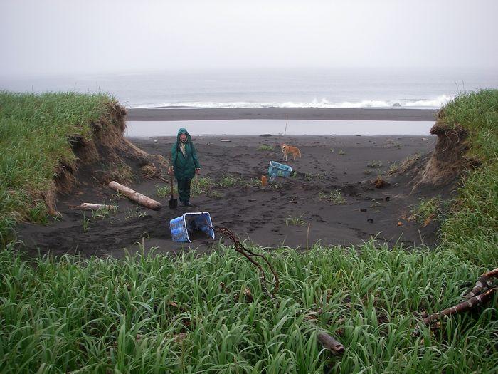 о. Симушир, бухта Душная. Промоина в террасе, образованная цунами.